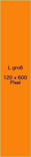 Banner_Musterbeispiel_120_x_600_Pixel
