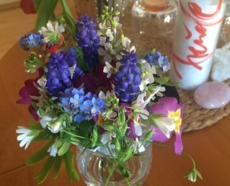 Gisela:Blumen